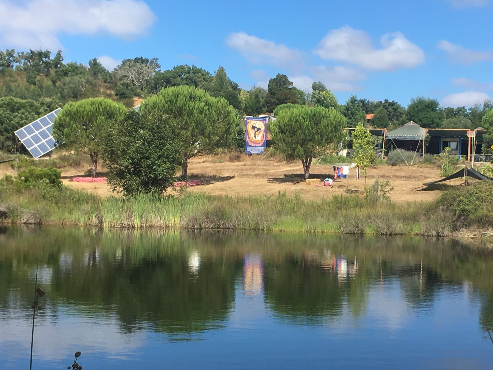 Tamera Blog Lake