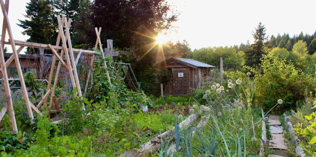 Permaculture Land Practices