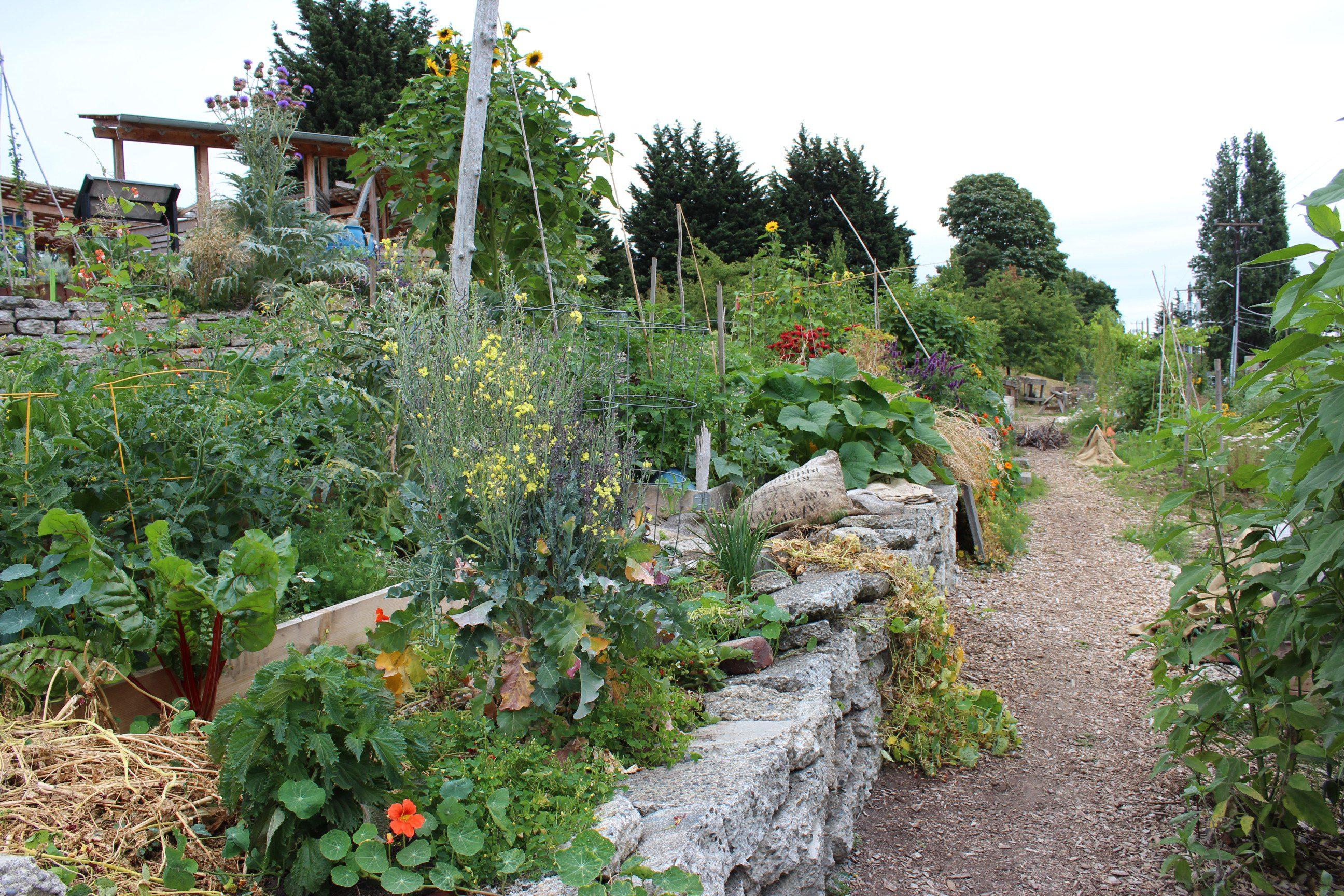 Washington garden path