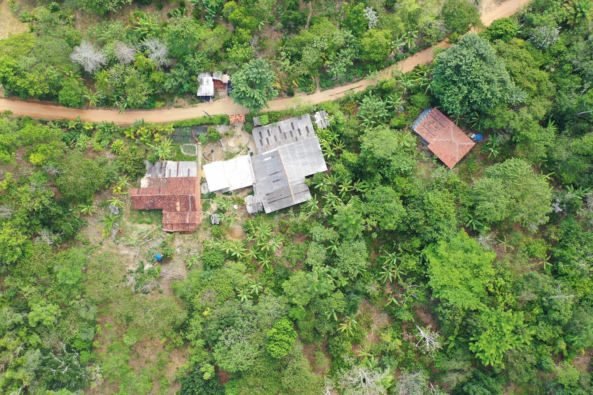 ©KilomboTenode – A birdseye view of Kilombo Tenodés centre, with kitchen garden and the wider syntrophic rainforest