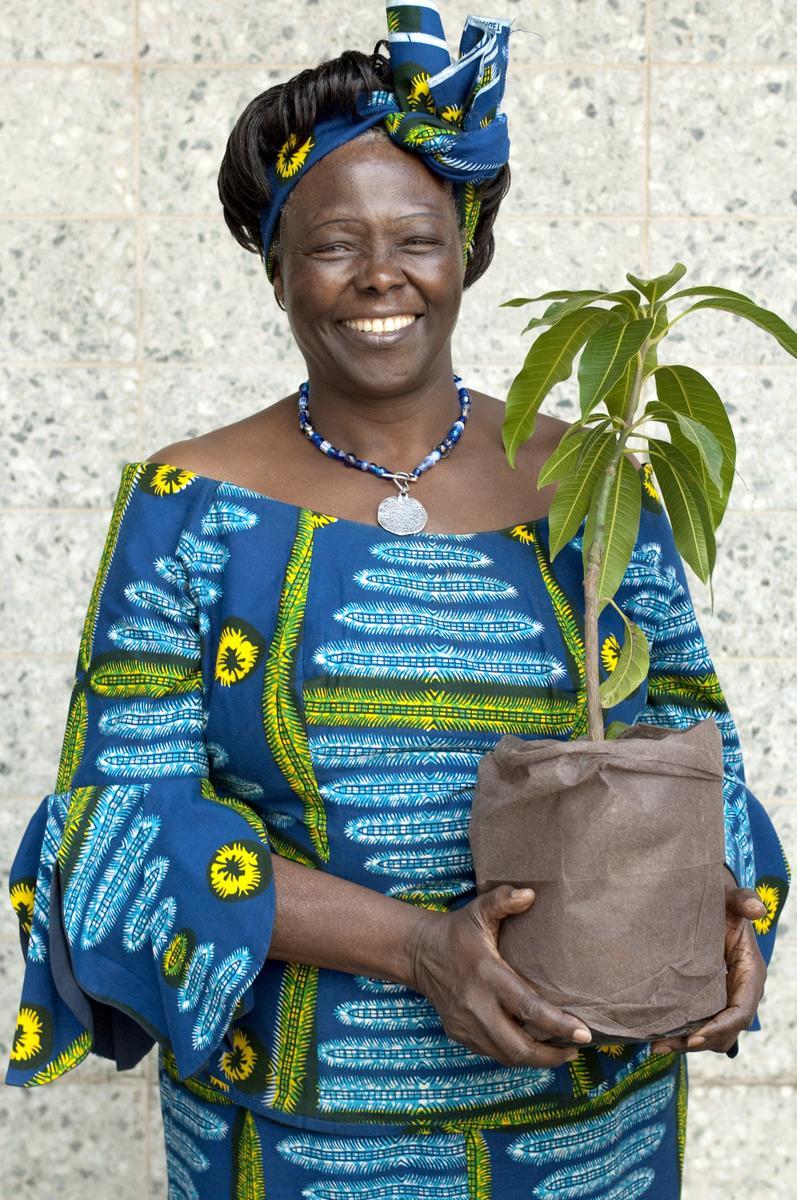 PHOTO of Wangari Maathai by (c) Patrick Wallet