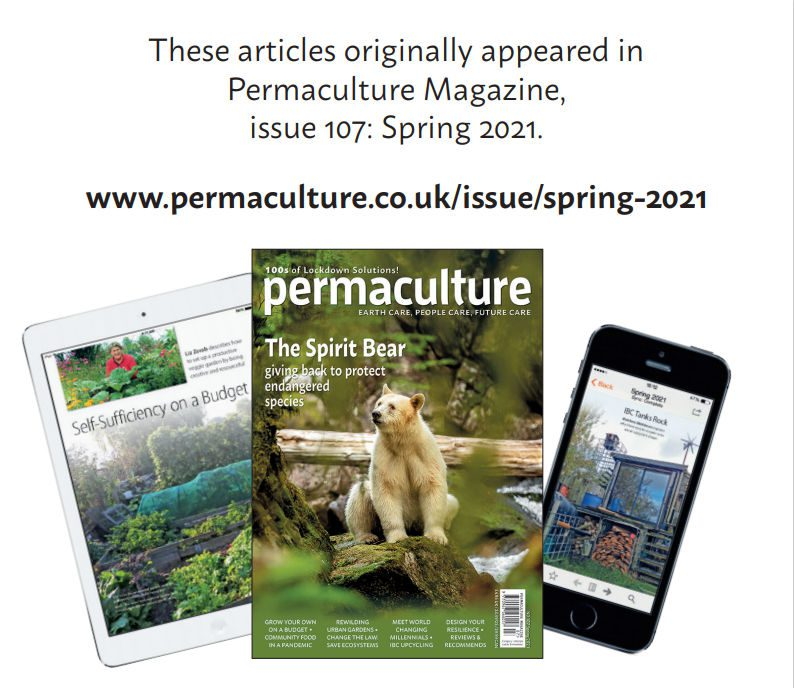 Youth In Permaculture Prize 2020