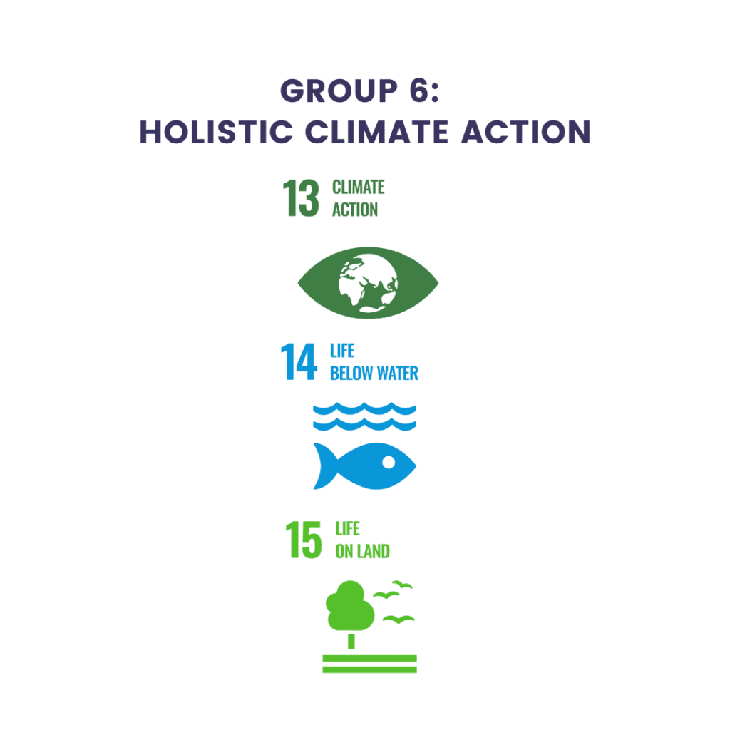 Sustainable Development Goals from the United Nations Group 6