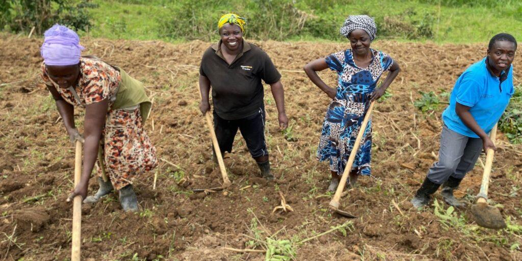 Refarmers Permaculture Farmers