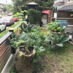 Tiny Garden Example