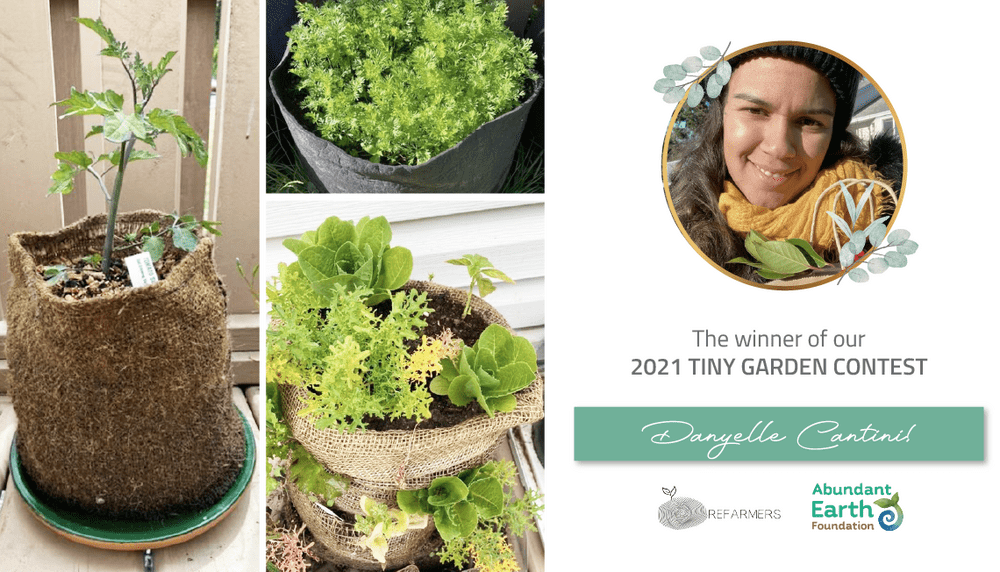 Read more about the article Announcing the 2021 Tiny Garden Contest Winner