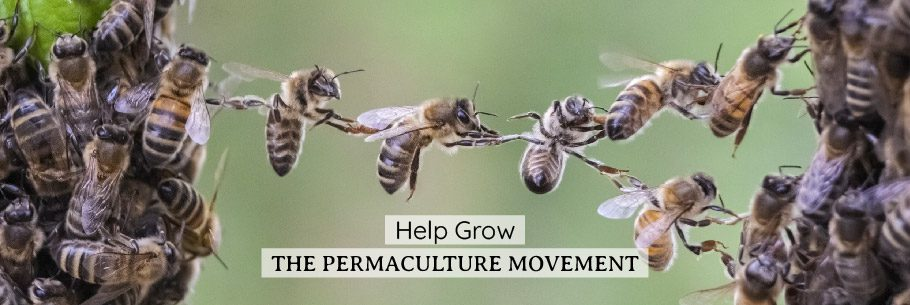 Permaculture Fundraiser Web_Banner-01