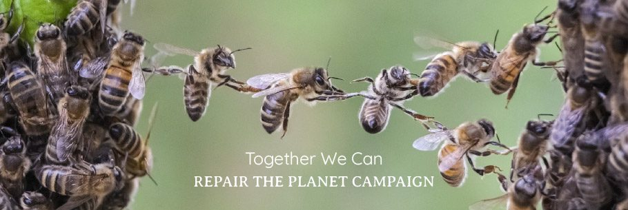 Together We Can Repair The Planet Campaign