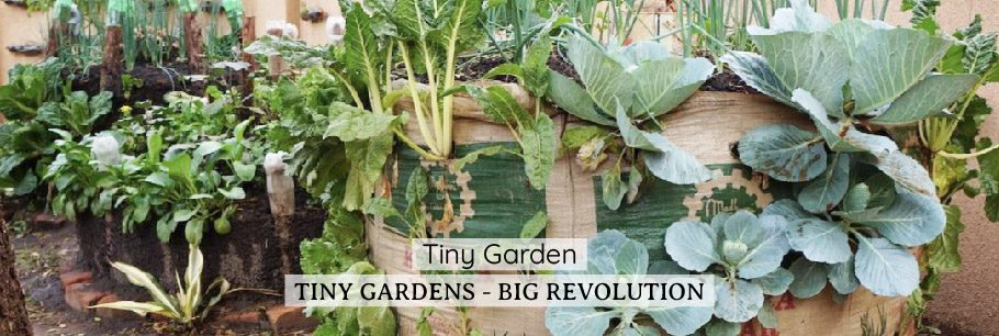 Tiny Gardens Web Banner